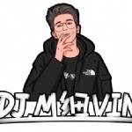 DJ细VIN